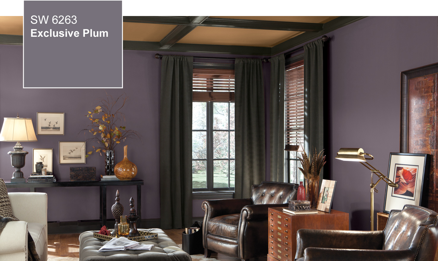Color of the Year 2014 ~ Sherwin Williams