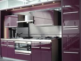 Contemporary Kitchen with Deep Purple Cabinetry