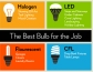 Best Light Bulbs, HouseLogic.com